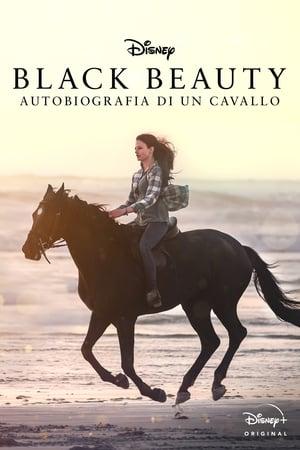 Black Beauty poszter