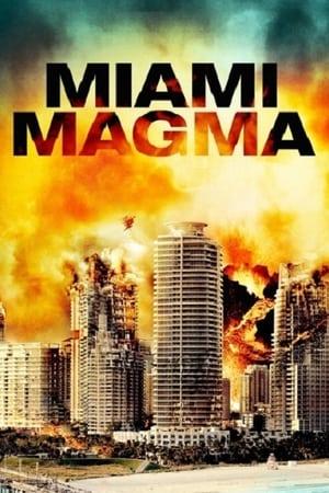 Miami végveszélyben poszter