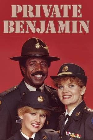 Private Benjamin poszter
