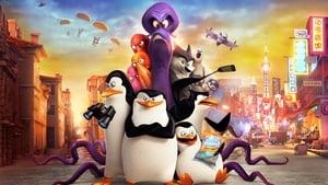 A Madagaszkár pingvinjei háttérkép
