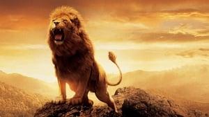 Narnia krónikái: Az oroszlán, a boszorkány és a ruhásszekrény háttérkép