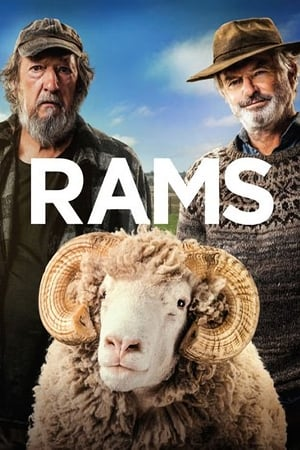 Rams poszter