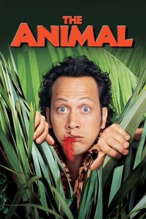 Tök állat