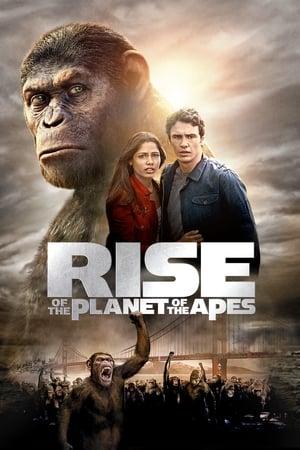 A majmok bolygója: Lázadás poszter