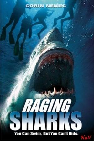A cápák visszatérnek