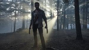 Logan - Farkas háttérkép