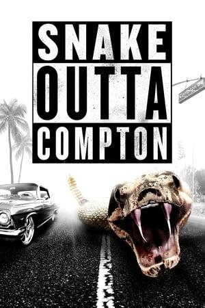 Kígyófrász a bűnös városban