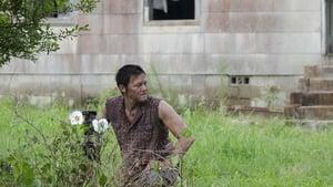 The Walking Dead 2 évad Ep.4 Cherokee rózsa