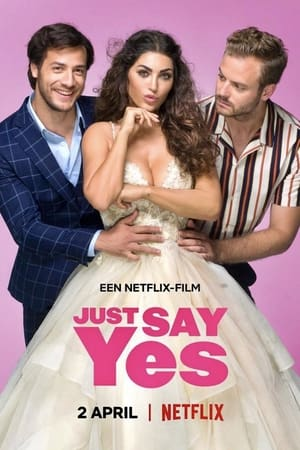 Csak mondj igent!