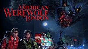 Egy amerikai farkasember Londonban háttérkép