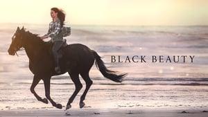 Black Beauty háttérkép