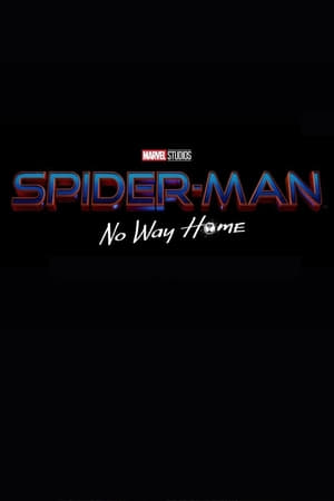 Spider-Man: No Way Home poszter