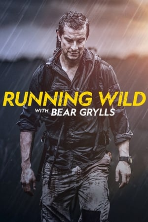 Bear Grylls: Sztárok a vadonban