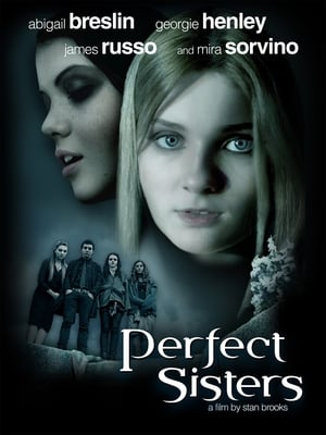 Perfect Sisters poszter
