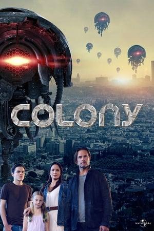 Kolónia poszter