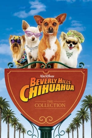 Beverly Hills Chihuahua filmek