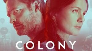 Kolónia kép