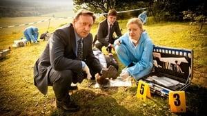 Kisvárosi gyilkosságok (A Midsomer gyilkosságok) kép