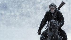 A majmok bolygója: Háború háttérkép