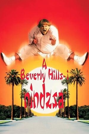 Beverly Hills-i nindzsa