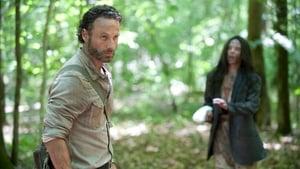 The Walking Dead 4 évad Ep.1 30 baleset mentes nap