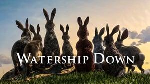 Watership Down kép