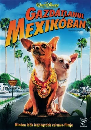 Gazdátlanul Mexikóban