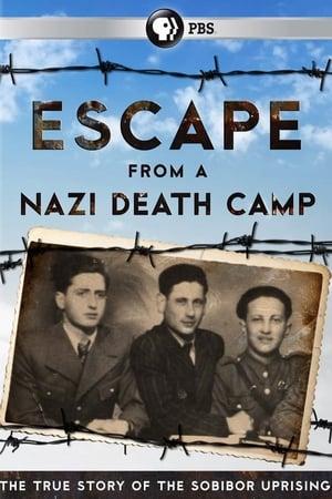 Szökés a náci haláltáborból