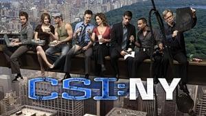 CSI: New York-i helyszínelők kép
