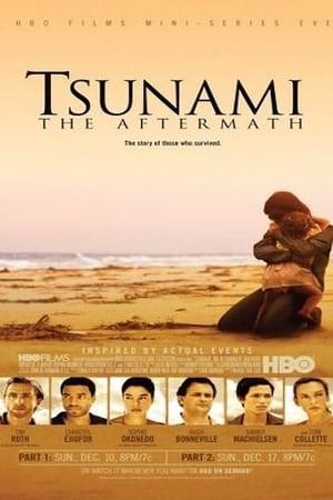 A cunami után