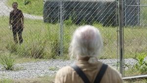 The Walking Dead 4 évad Ep.8 Az a bizonyos határ